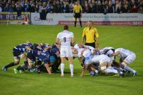 Sarries give Bedford the Blues