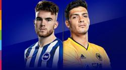 Match Thread: Brighton & HA vs Wolves