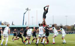 CAN SARRIES CLIP OSPREYS' WINGS?