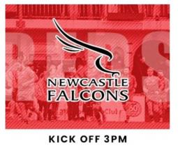 Jersey Reds v Newcastle Falcons 29 FEB - Information
